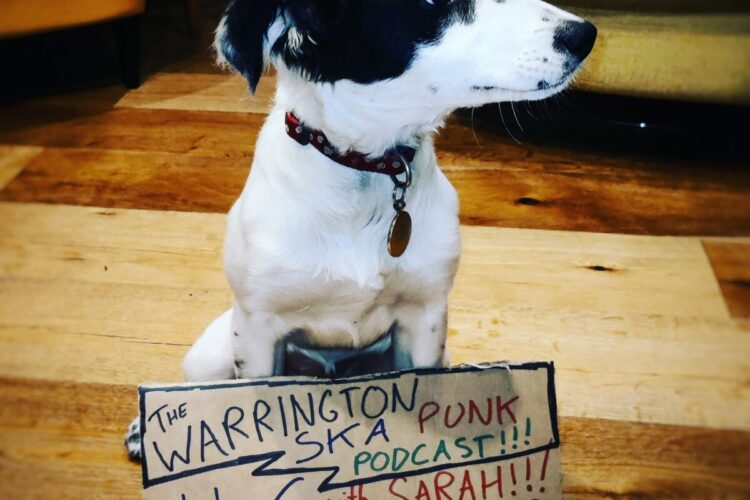 Dog with sign saying Podcast 6